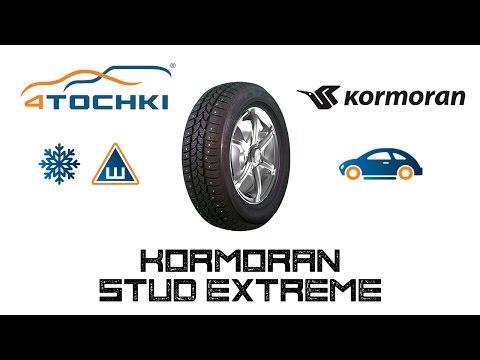 Kormoran Stud Extreme
