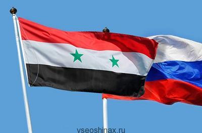 Совместный проект России - Сирии